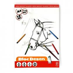 BLOC DESEN A4 PP 110G